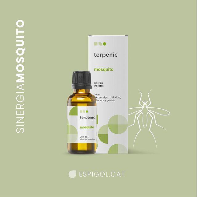 espigol-sinergia_oli-mosquito